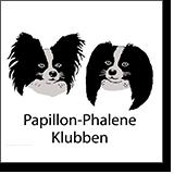 Papillon og Phalene Klubben